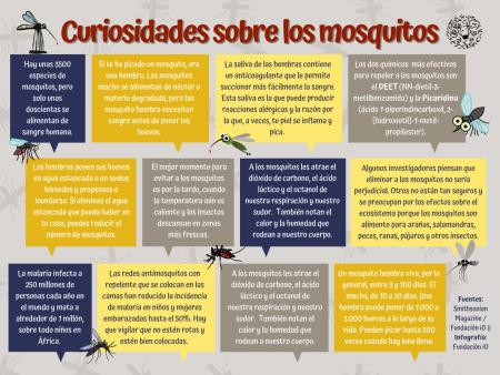 Curiosidades-sobre-los-mosquitos