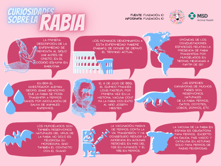 curiosidades_rabia