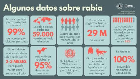 Algunos datos sobre la rabia zoonosis nomásrabia