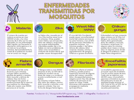 Mosquito-borne-diseases wnv zika malaria dengue