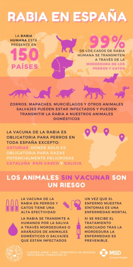 Rabia_En_España_Fundacioio