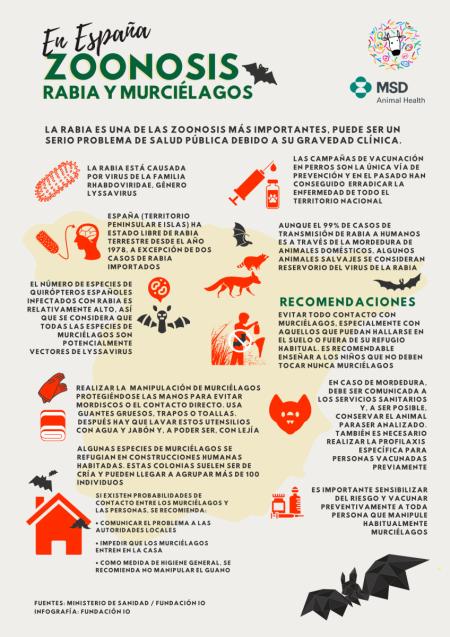 zoonosis-rabia-murciélagos-españa